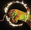Цирки в Петровском